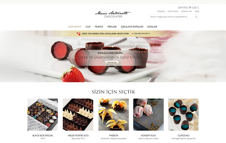 magento e ticaret alışveriş sitesi  web tasarımı, kurumsal site tasarımı, marieantoinette